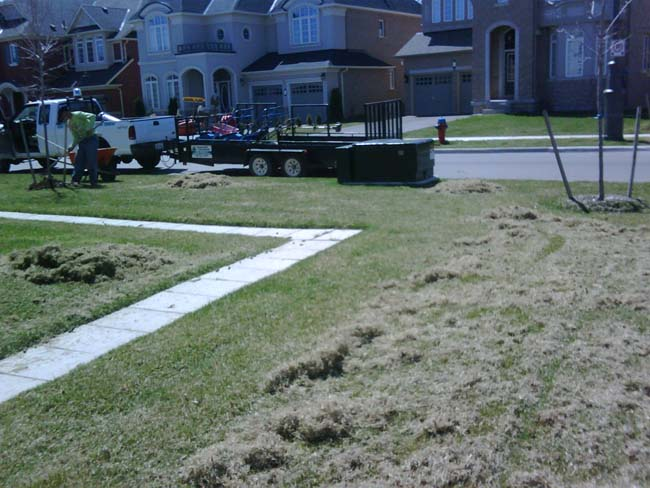 Lawn De-thatching for a healthy golf course looking lawn Milton