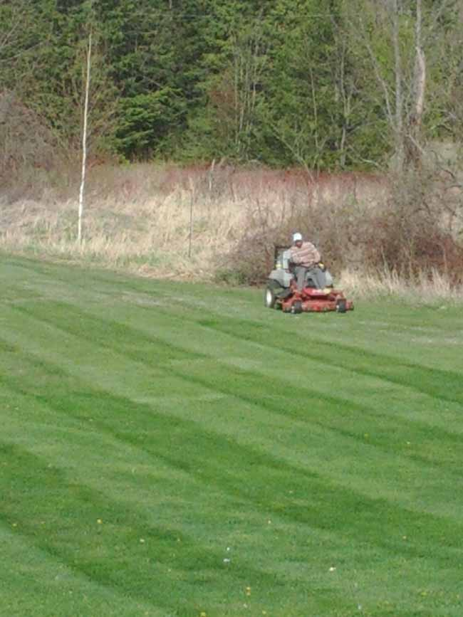Book your weekly lawn cutting and maintenance services Halton region